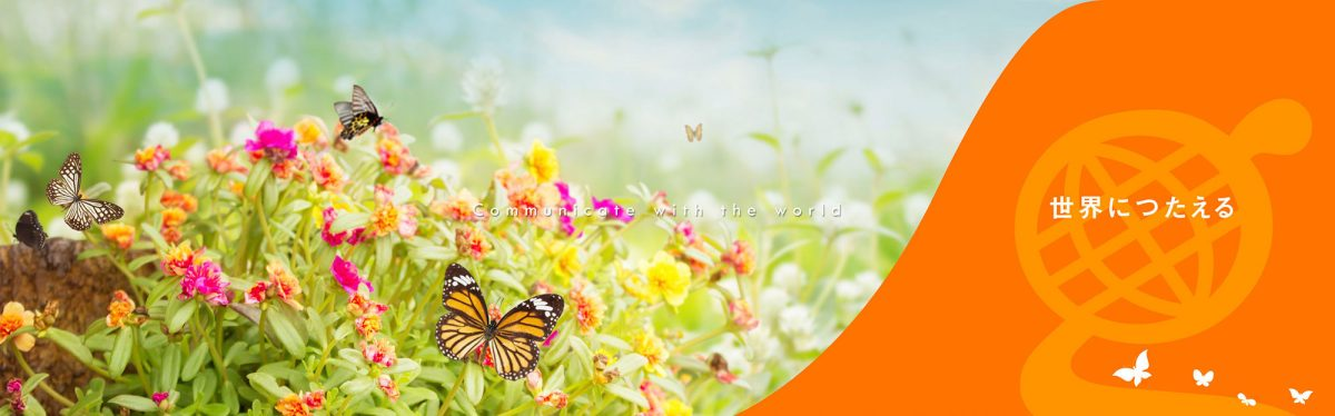 new_banner_butterfly_2000_02